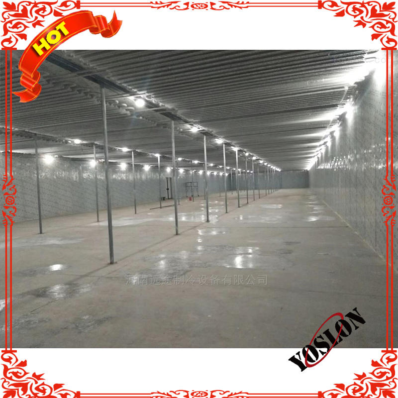 Full automatic quick freezing cold storage room for condensing unit